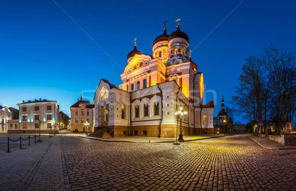 Panorama of Alexander Nevsky Cathedral in the Evening, Tallinn,  Stock photo © anshar