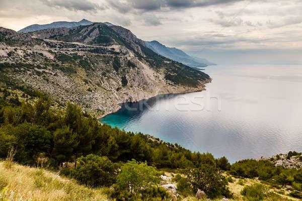 表示 海岸 クロアチア ツリー 雲 ストックフォト © anshar