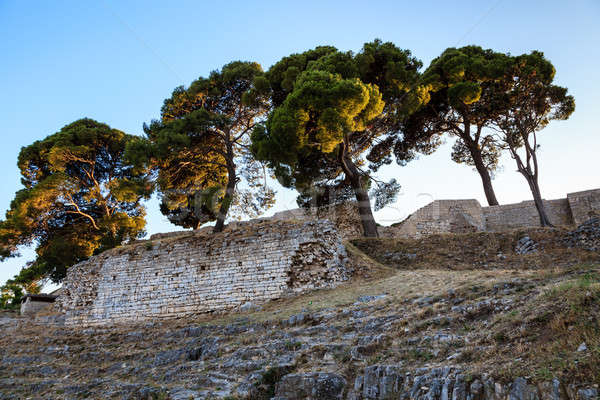 Roman Ampitheater Ruins in the Ancient Town of Pula, Istria, Cro Stock photo © anshar