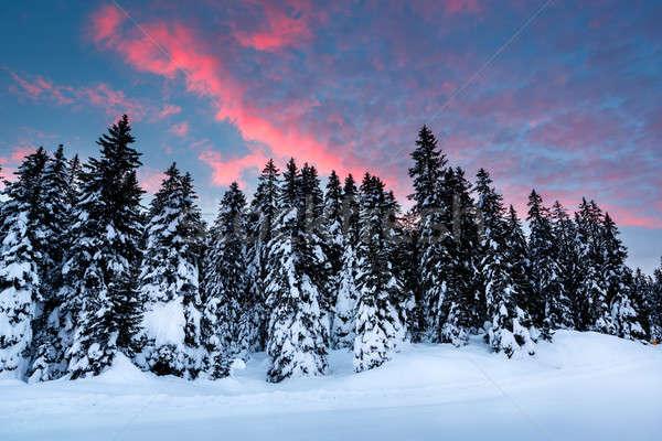 Beautiful Sunrise near Madonna di Campiglio Ski Resort, Italian  Stock photo © anshar