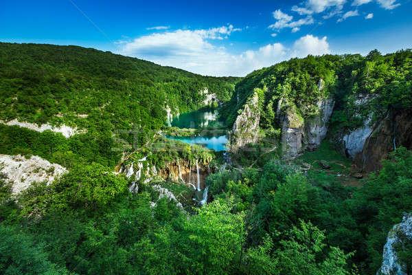 滝 公園 ツリー 森林 風景 ストックフォト © anshar