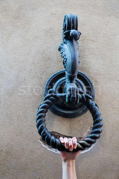 стороны металл кольца галстук лошадей Сток-фото © anshar