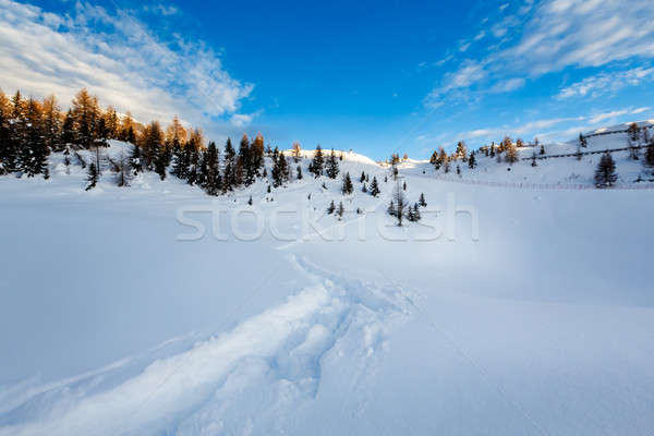 Madonna di Campiglio Ski Resort in Italian Alps, Italy Stock photo © anshar