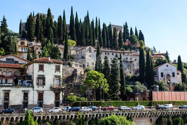 Adige River Embankment in Verona, Veneto, Italy Stock photo © anshar