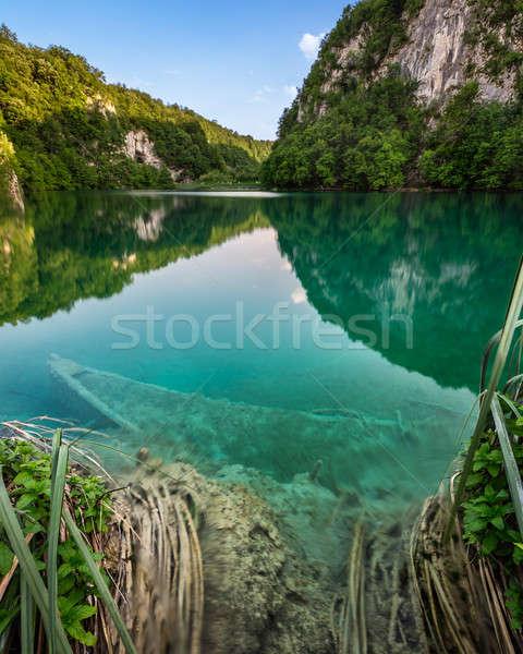 ボート 公園 クロアチア 水 ツリー 森林 ストックフォト © anshar