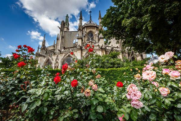 Hölgy Párizs katedrális piros fehér rózsák Stock fotó © anshar