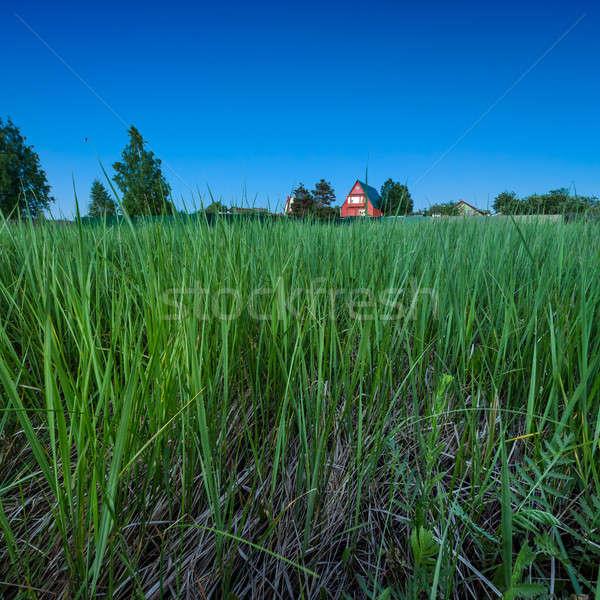 Rosso paese casa profondità erba verde crepuscolo Foto d'archivio © anshar