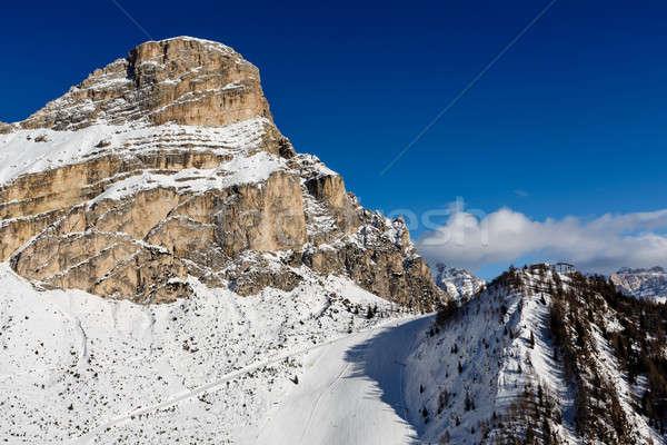 Kayakçılık başvurmak alpler İtalya ağaçlar Stok fotoğraf © anshar