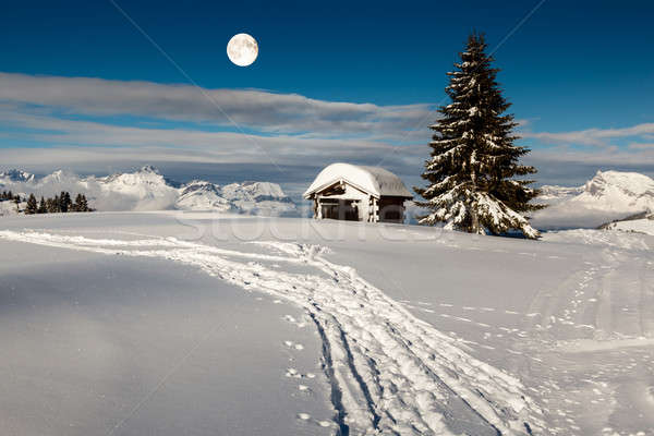 Full Moon above Small Hut and Fir Tree on the Top of the Mountai Stock photo © anshar