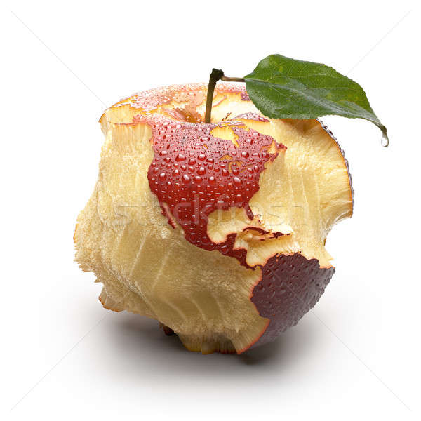 Apple with carved continents. America Stock photo © Antartis