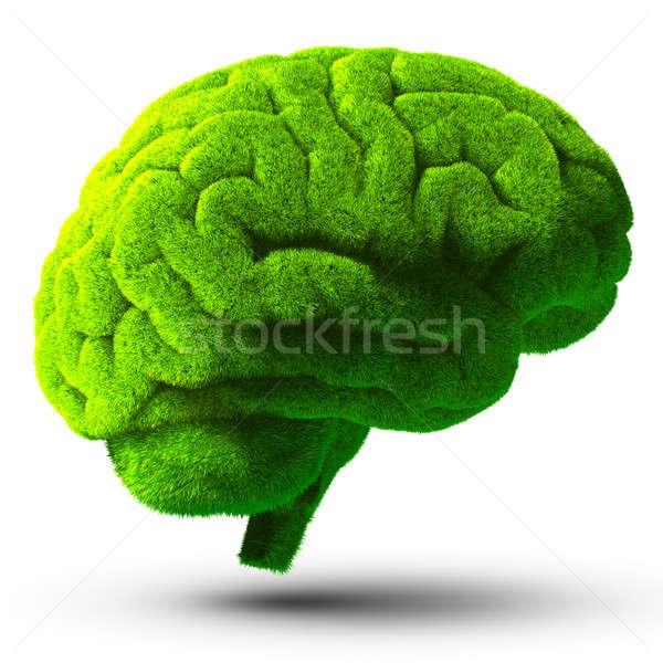 Zielone mózgu pokryty zielona trawa metafora Zdjęcia stock © Antartis