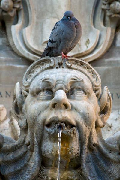 Pigeon sitting on a sculpture Stock photo © Antartis