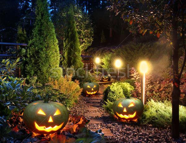 Bahçe veranda ev yol ışıklar Stok fotoğraf © Anterovium