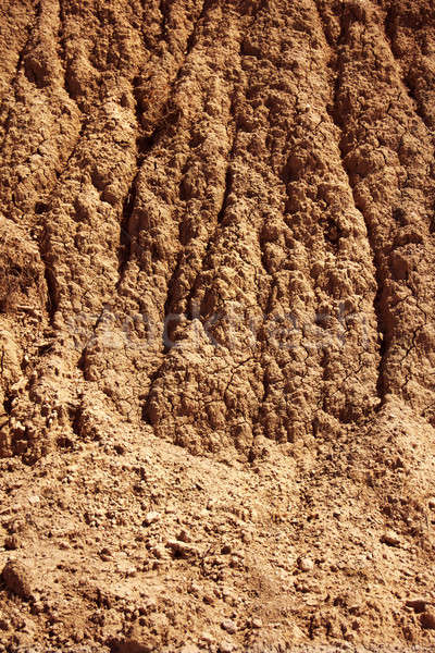 Dry agricultural brown soil Stock photo © Anterovium