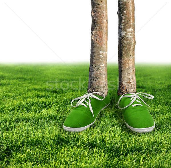 Green carbon footprint concept Stock photo © Anterovium