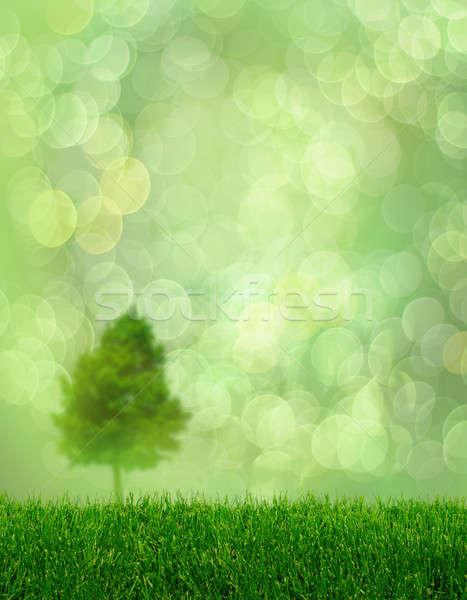 Zöld fű tavasz fa fantázia bokeh égbolt Stock fotó © Anterovium