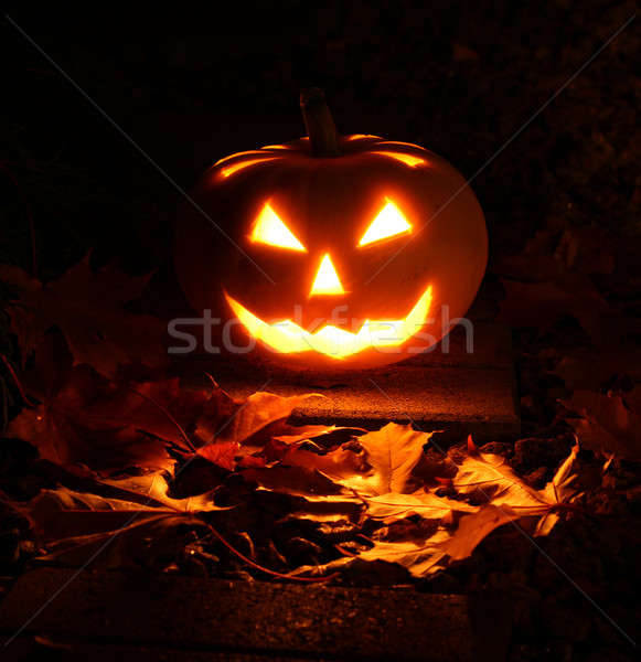 Halloween pumpkin in dark garden Stock photo © Anterovium