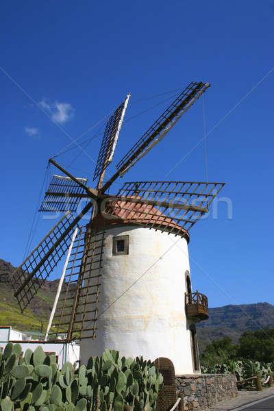 old windmill Stock photo © Anterovium