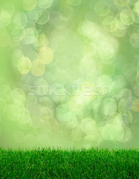 зеленая трава весны фантазий bokeh мягкой эффект Сток-фото © Anterovium