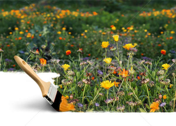 Paintbrush painting autumn colors Stock photo © Anterovium
