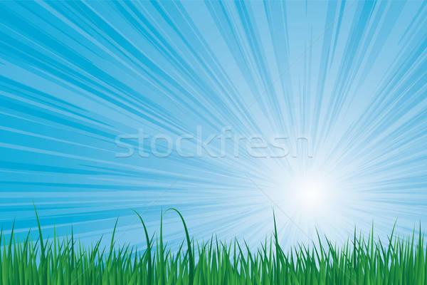 Hemel groen gras blauwe hemel vector afbeelding voorjaar Stockfoto © antkevyv