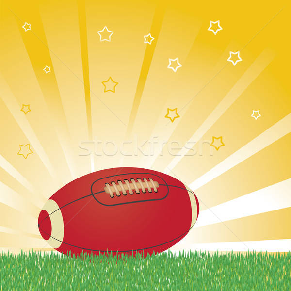 Amerikaanse voetbal bal veld sport Stockfoto © antkevyv