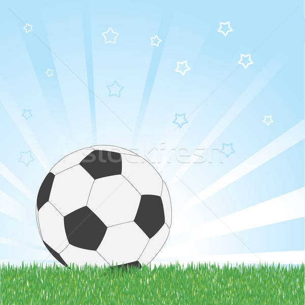 Voetbal star Blauw voetbal voetbal Stockfoto © antkevyv