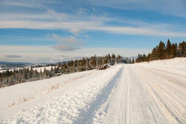 Sneeuw berg winter weg bos Stockfoto © antkevyv