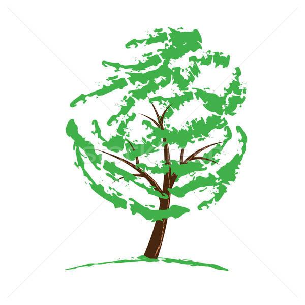 Groene boom tekening geïsoleerd witte boom natuur Stockfoto © antkevyv