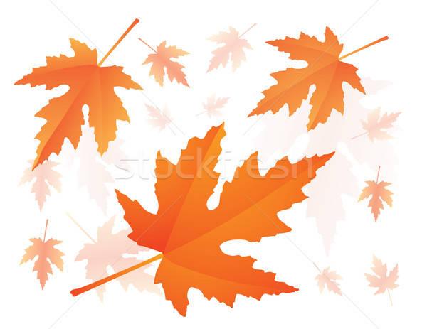 Vallen esdoorn bladeren Rood illustratie Stockfoto © antkevyv