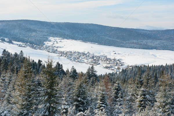 Dorp vallei winter bergen sneeuw Stockfoto © antkevyv
