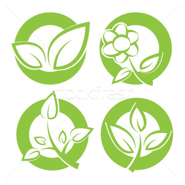 Groene bladeren stickers ingesteld blad teken groene Stockfoto © antkevyv