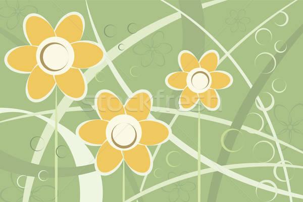 Abstract gestileerde daisy bloemen vector afbeelding Stockfoto © antkevyv