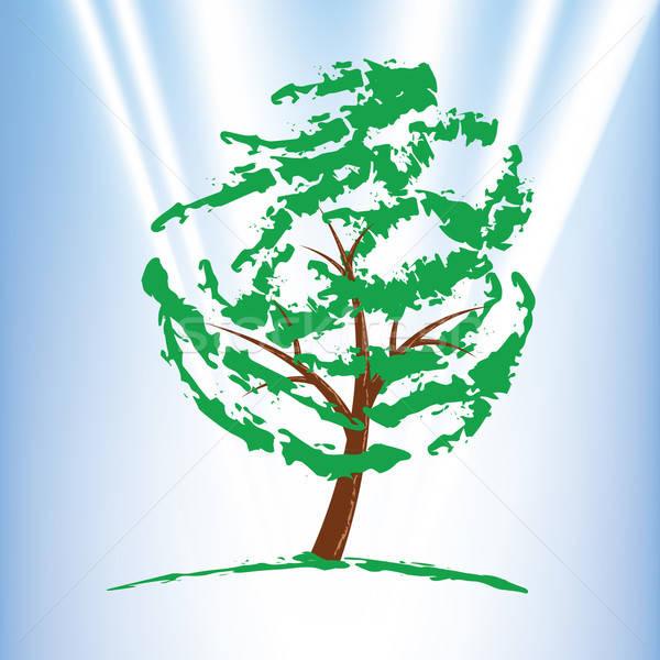 Groene boom blauwe hemel boom natuur schoonheid zomer Stockfoto © antkevyv