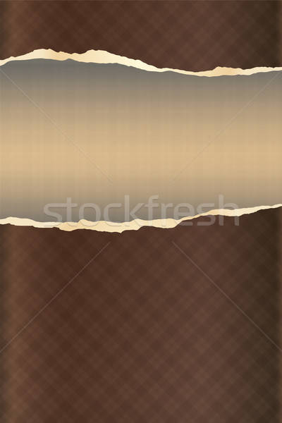 abstract ripped paper textile scrap booking Stock photo © antkevyv