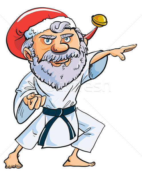 Cartoon Karate Santa Clause Stock photo © antonbrand