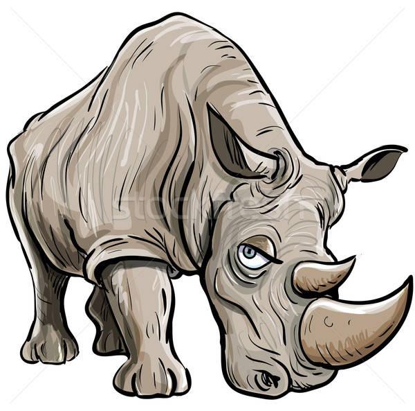 Karikatur Illustration rhino isoliert Kopf african Stock foto © antonbrand