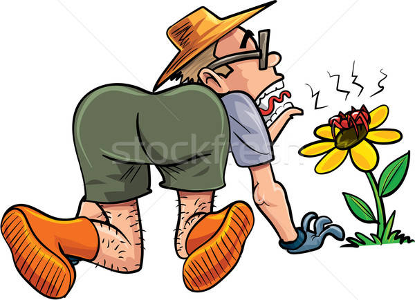 Cartoon gardener scared by spider Stock photo © antonbrand