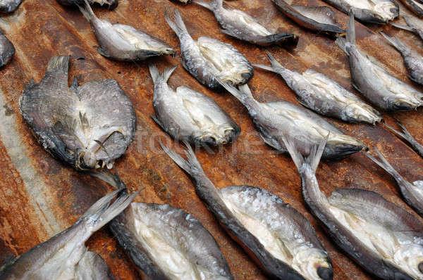 Stock fotó: Aszalt · hal · csetepaté · étel · szem · természet