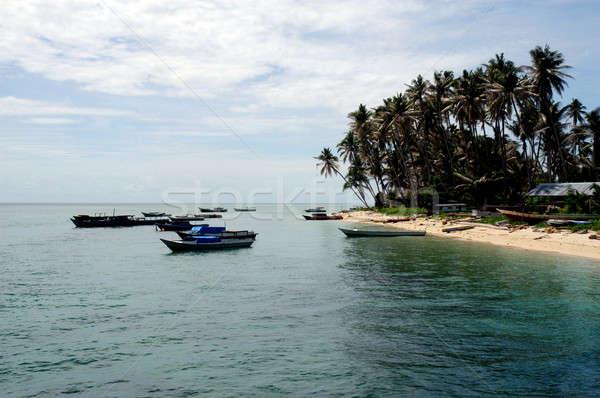 Sziget egy turisztikai attrakció keleti Borneo tengerpart Stock fotó © antonihalim