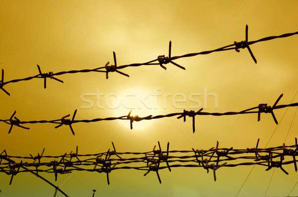 線 フェンス 空 デザイン 金属 フレーム ストックフォト © antonihalim