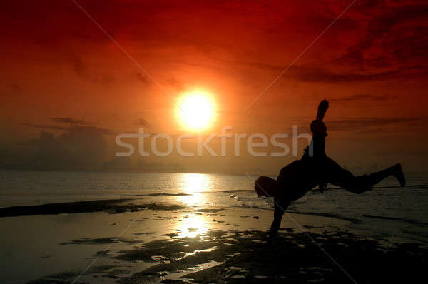 Gyorsúszás sziluett férfi tengerpart víz boldog Stock fotó © antonihalim