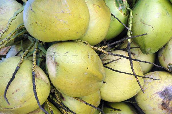 bunch of coconuts Stock photo © antonihalim