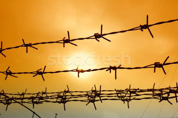 wire fence Stock photo © antonihalim
