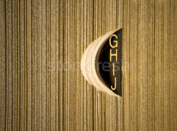 Sözlük eski moda altın harfler kitap Stok fotoğraf © antonprado