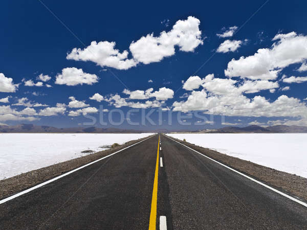 Infinite road Stock photo © antonprado