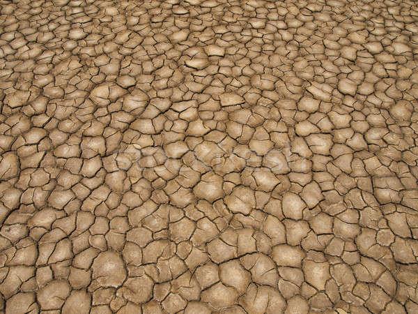 Aszály sült Föld föld hosszú textúra Stock fotó © antonprado