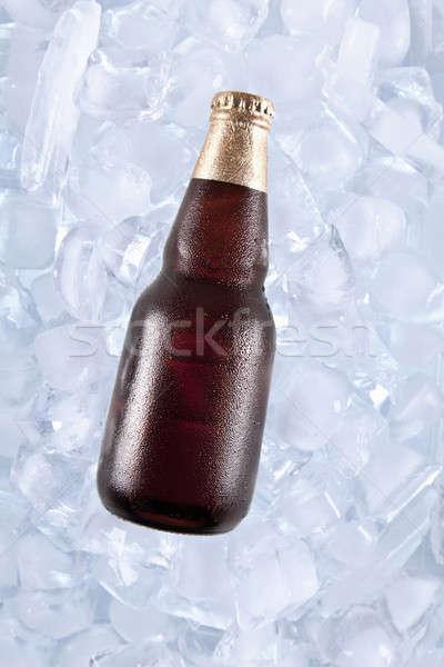 Jeden zimno ciemne piwa lodu Zdjęcia stock © antonprado