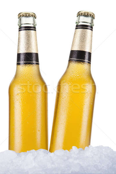 Dois cerveja garrafas sessão gelo branco Foto stock © antonprado