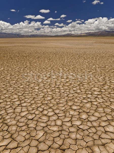 Seca grande campo terra longo Foto stock © antonprado